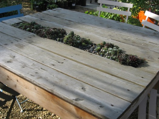 Planted table with succulents made out of repurposed pallets