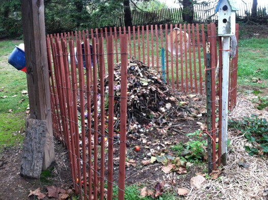 My compost pile is enclosed with snow fence and a built in gate for access