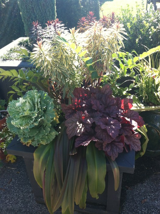 Fall container at Ladew Topiary Gardens