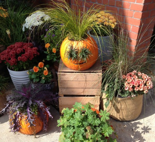 Creative Fall Containers photogrpahed by Marion of Mullan Nursery