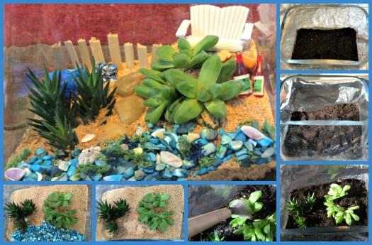 Beach succulent terrarium tutorial