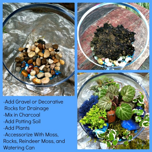 Steps for creating a woodland terrarium