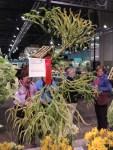 Philadelphia flower show 2014 161