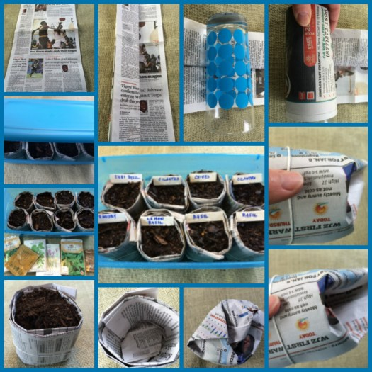 Using newspaper to make seed starters