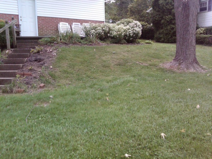 Hillside Makeover Transforming An Ordinary Slope Into A Waterfall Oasis The Garden Diaries