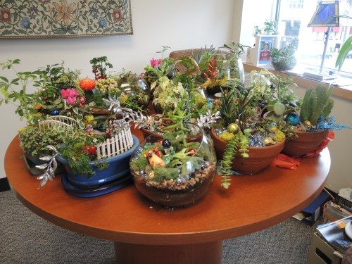 Mini gardens dropped off at  Johns Hopkins