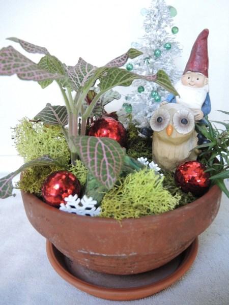 Mini garden with gnome