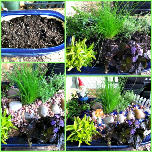 Step by step for making miniature gardens