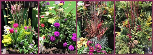 Four season containers