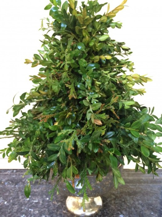 Insert your completed boxwood tree into a pretty container; here I used a footed mercury vapor container