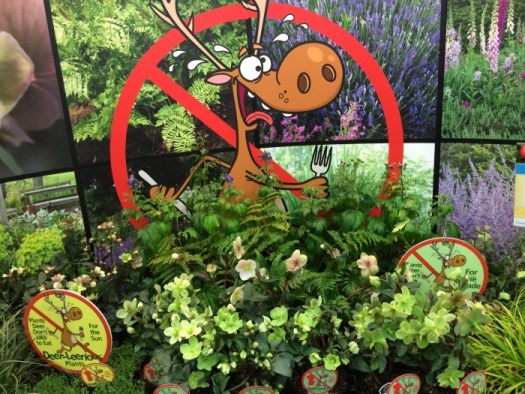A display of deer proof plants at a trade show