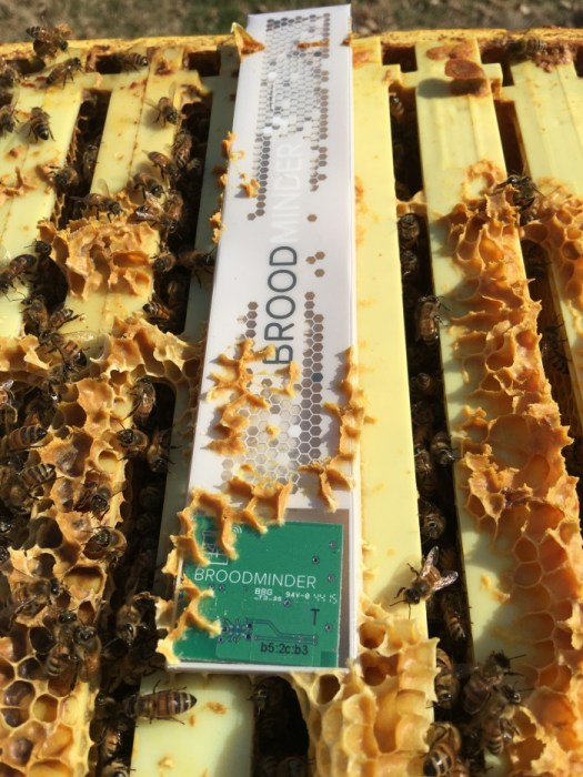 The broodMinder is a thin bluetooth enabled monitor that is inserted on top of the hives