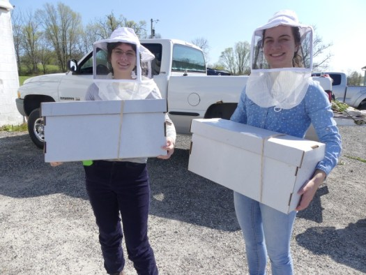 Two college students picking up Nucs for their campus