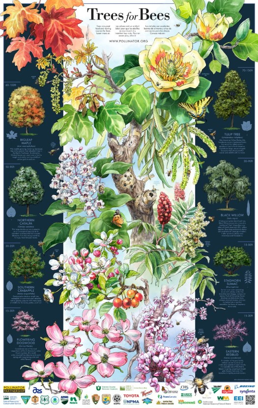 Trees-For-Bees-2016-Poster_800x1260