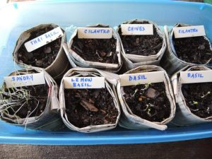 Label all your seeds