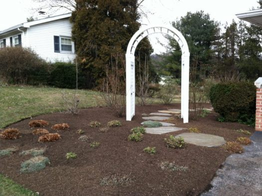 Cut back your perennials and shrubs and mulch in early spring