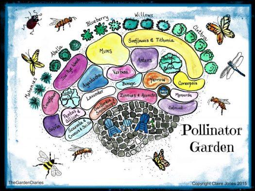 Sample plan of a pollinator garden