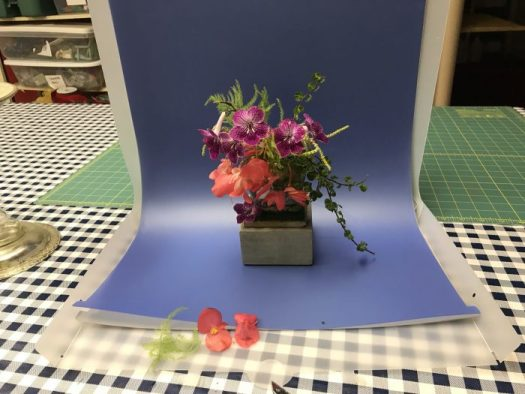 Small arrangements were easy to photograph with backdrops
