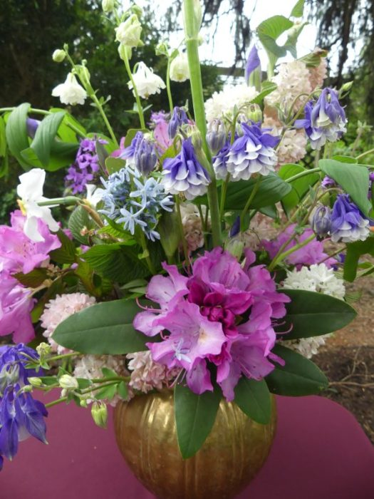This blue and white columbine paired with a Rhododendron truss is stunning in an arrangement