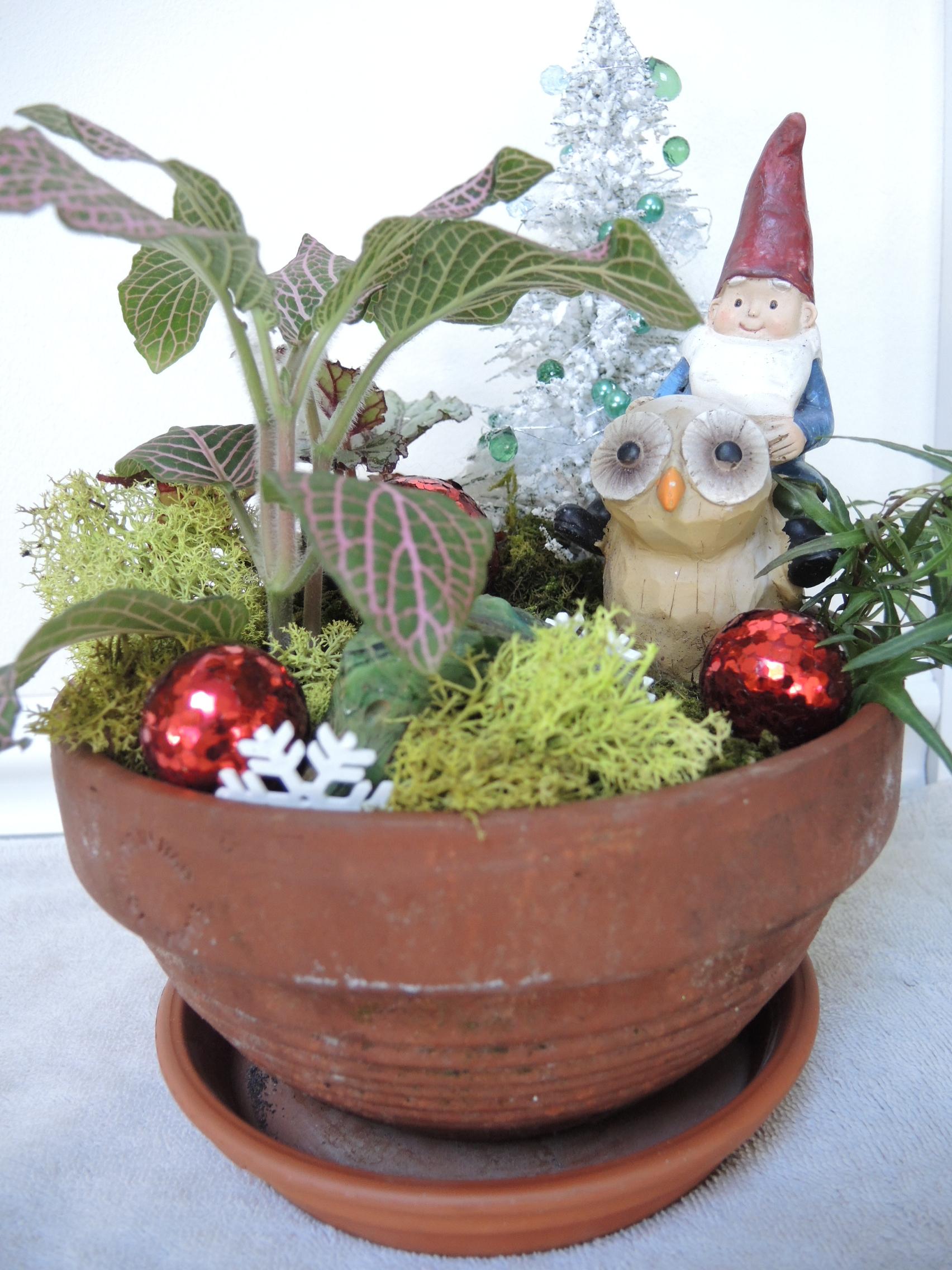 Fairytale Christmas The Garden Diaries