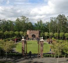 Allen's Garden...