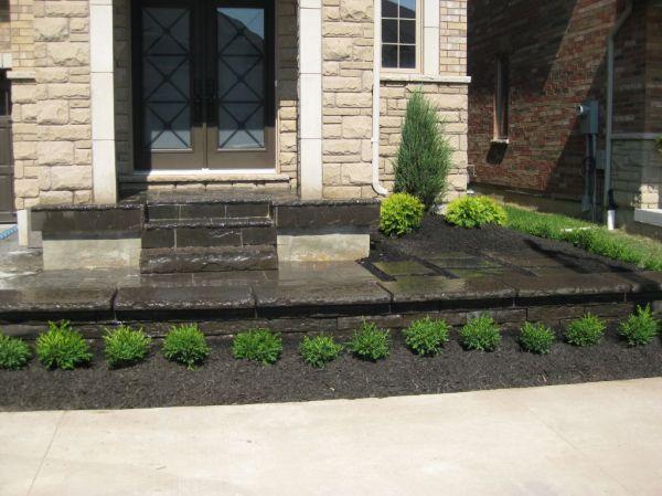 walkway and driveways gardener