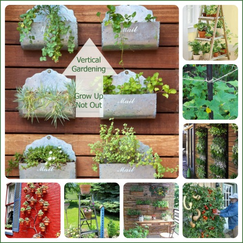 Vertical Gardens Growing Up Instead Of Out