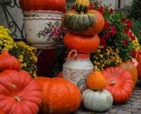 Halloween DIY projects - Quick and Easy Decor - The ...