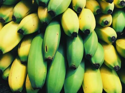 bananas - how to attract hummingbirds