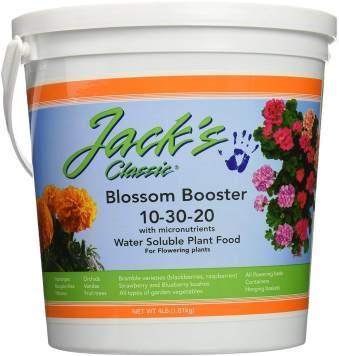 jacks plant food