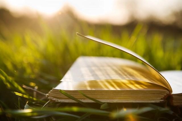 gardening books to read