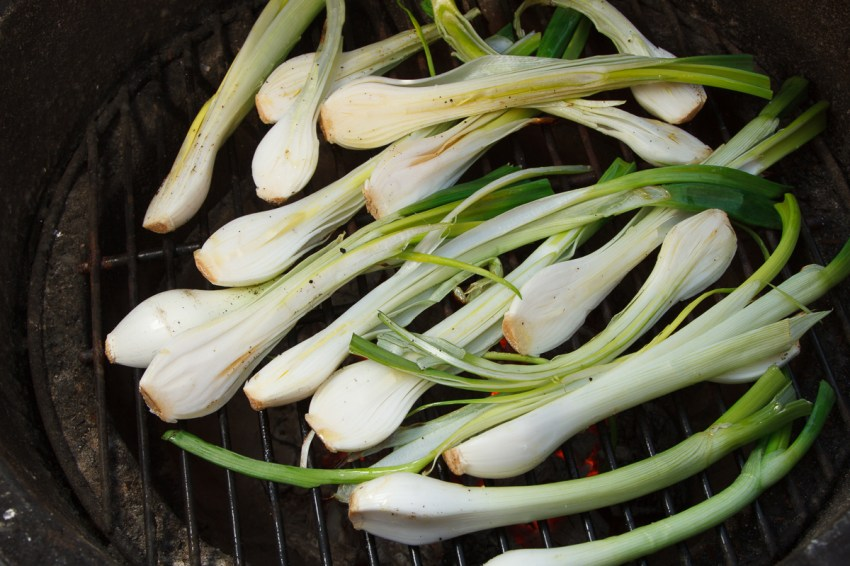 Grilled Spring Onions with Romesco TGF-24