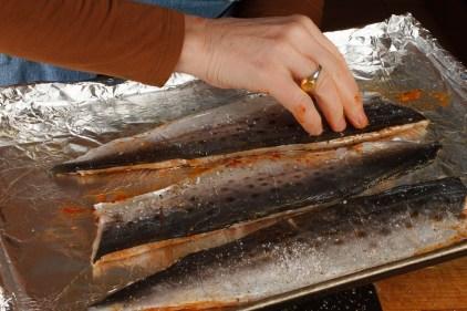 Spanish Mackerel, Saffron and Honey with Fennel - Blood Orange Salad-31