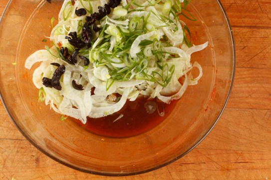 Spanish Mackerel, Saffron and Honey with Fennel - Blood Orange Salad-36