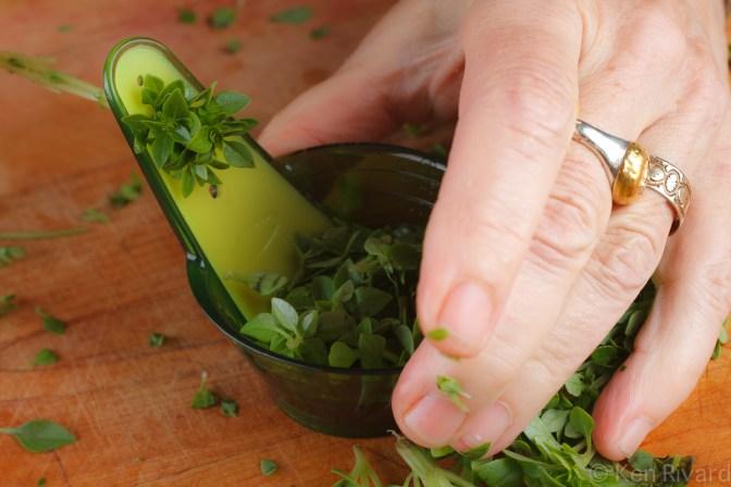 Summer squash salad-8120