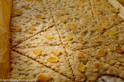 Pecan Ginger Tiles-6782