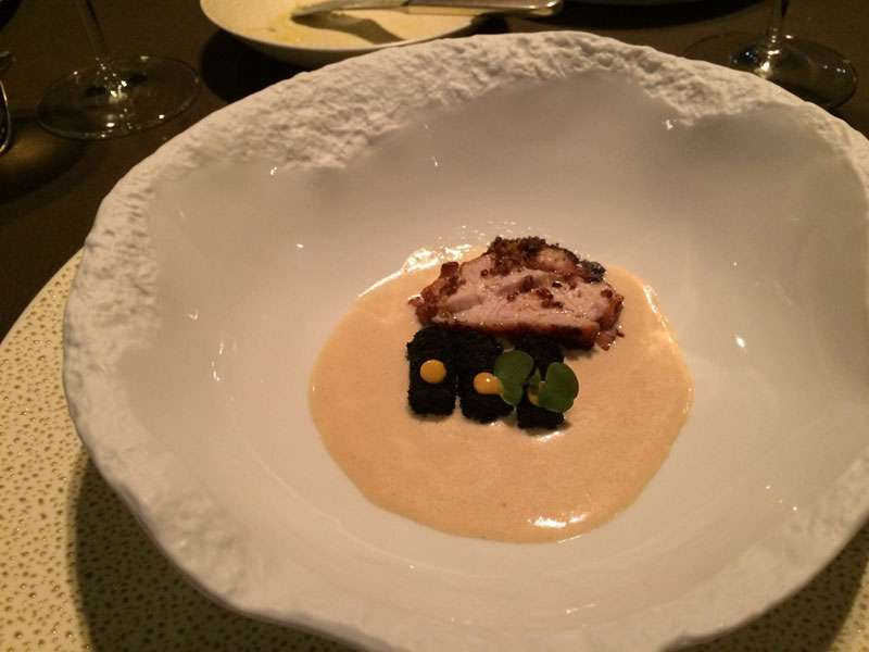 Veal sweetbread served