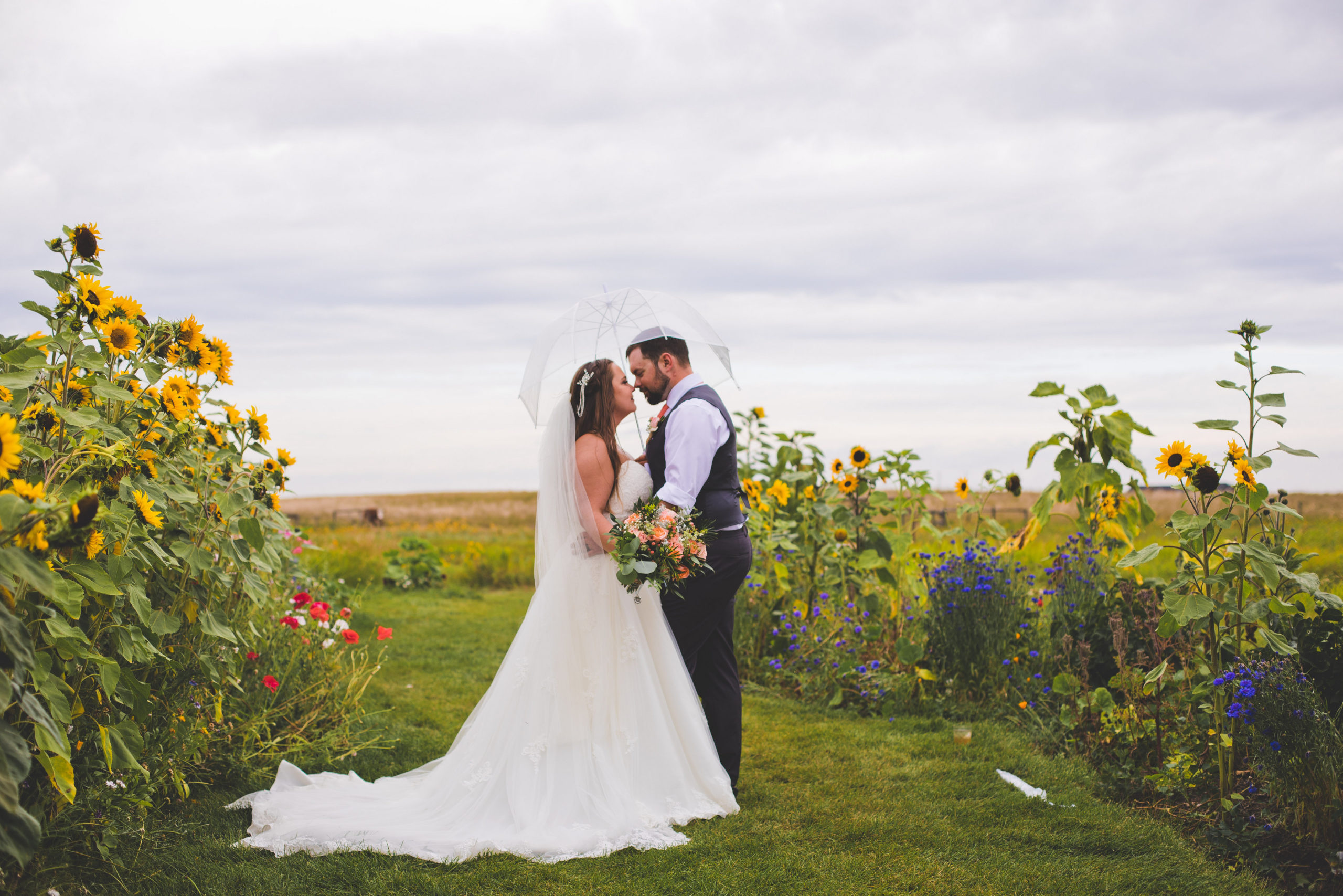 sunflowers and wild flowers line a grassy path and a bride and groom walk down it while they stare at each other. https://www.thegathered.ca