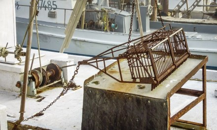 CMR PROHIBITS OYSTER BASKET DREDGE; CHANGES CRAB REGULATIONS