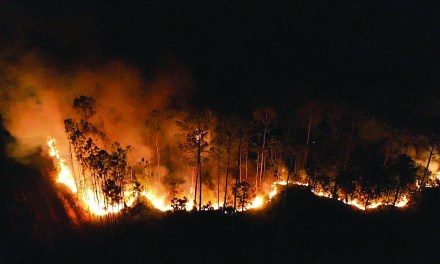 West Harrison County Woods Fire Contained