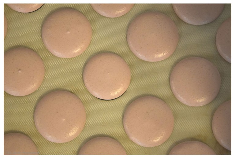 piped out macaron batter