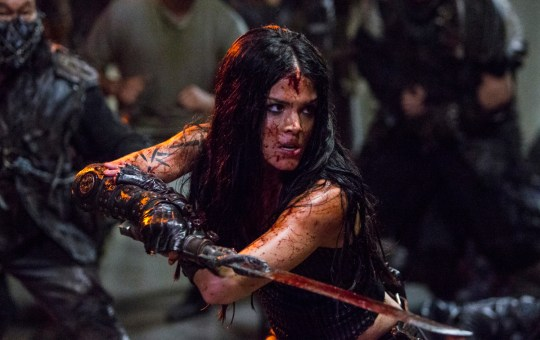 The 100 Red Queen