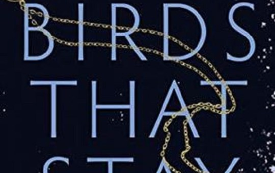 The Birds that Stay Book Review Ann Lambert