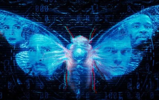dark web cicada 3301 movie review