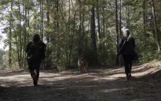 the bitching dead issue 33 The Walking Dead Season 10 Ep 21