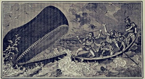 THE GEM 21 JULY 2017 : Would you go for a sail On the back of a whale? Would you sail through the ocean, so blue?