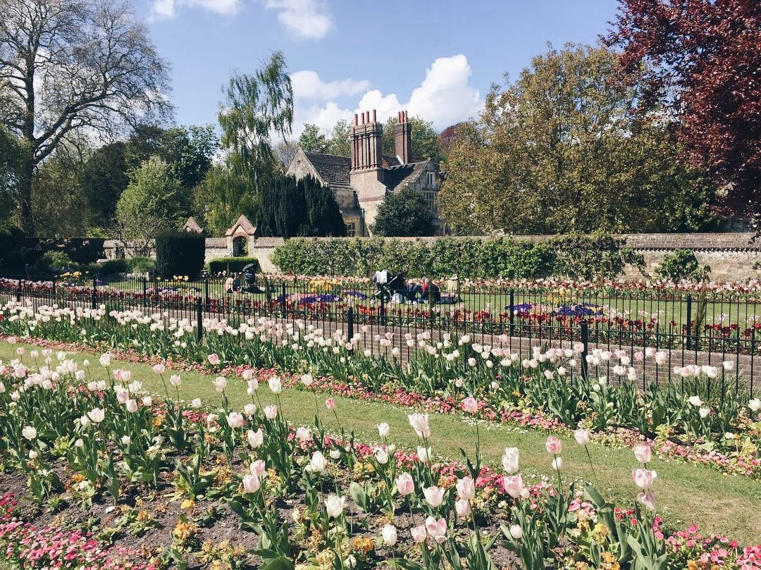 The perfect day trip to take a break from London