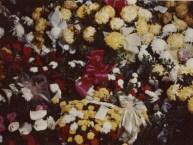 PETERSON, Darrell Skeen, Funeral Flowers 8