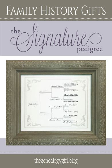 signature pedigree - RGB-01