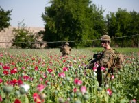 US-occupied Afghanistan provide six sevenths of the world's heroin